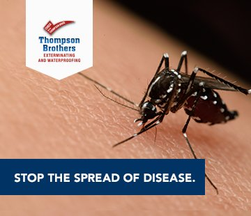 Eliminate Mosquitoes, Prevent Disease