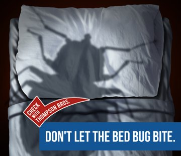 Don't Let The Bedbugs Bite