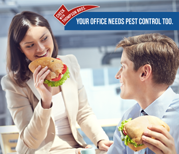 Businesses Need Pest Control Too