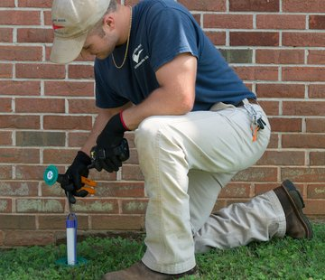 Why Every Home Needs a Termite Inspection